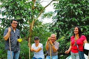 Tour finca cafetera cerca de Bogotá